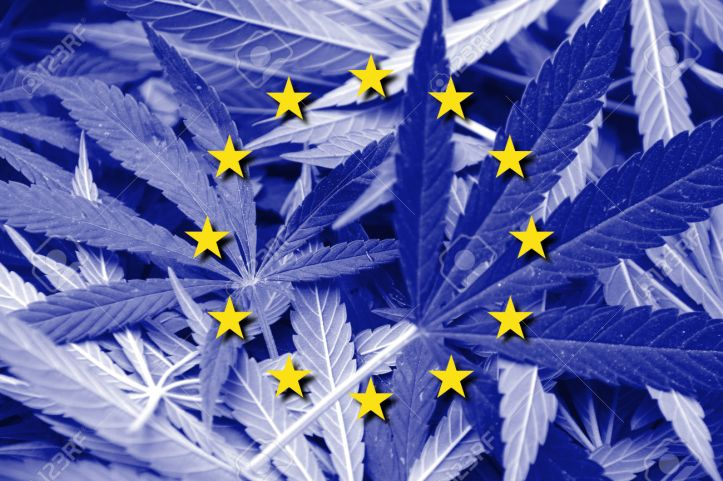 European Union Flag on cannabis background. Drug policy. Legalization of marijuana